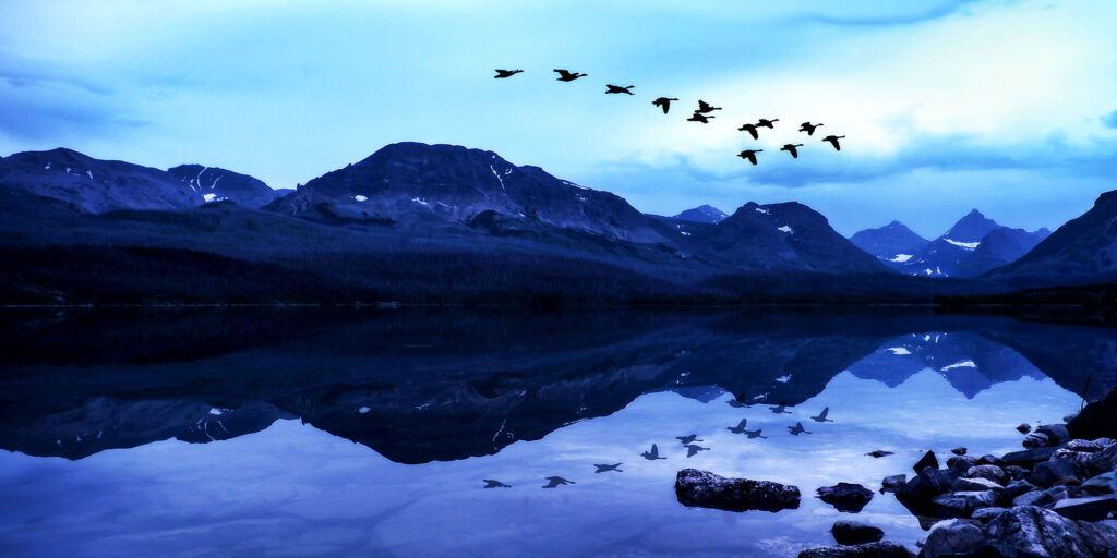 Geese Fly North Reflected In Epic Mountain Lake Landscape at Glacier National Park (Unsplash)